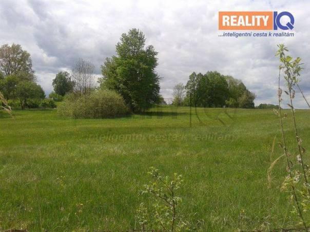 Prodej pozemku, Chlum u Třeboně - Lutová, foto 1 Reality, Pozemky | spěcháto.cz - bazar, inzerce