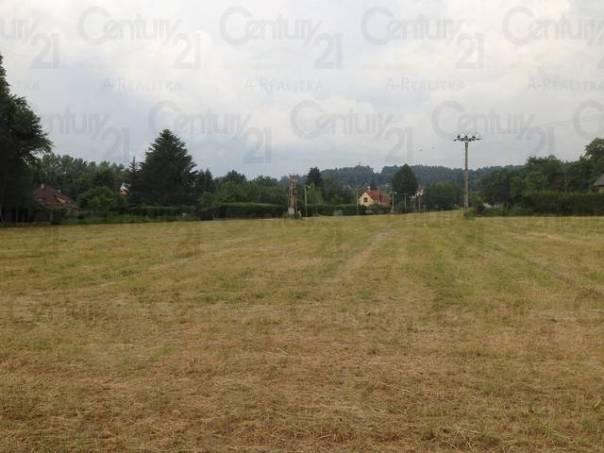 Prodej pozemku, Nespeky, foto 1 Reality, Pozemky | spěcháto.cz - bazar, inzerce
