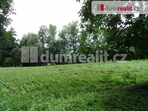 Prodej pozemku, Býčkovice, foto 1 Reality, Pozemky | spěcháto.cz - bazar, inzerce