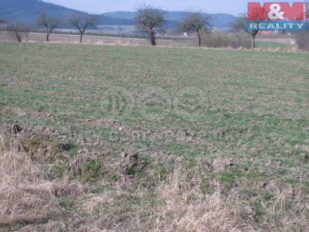 Prodej pozemku, Radošovice, foto 1 Reality, Pozemky | spěcháto.cz - bazar, inzerce