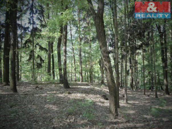 Prodej pozemku, Dolní Lochov, foto 1 Reality, Pozemky | spěcháto.cz - bazar, inzerce
