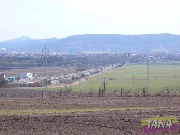 Prodej pozemku, Paceřice - Husa, foto 1 Reality, Pozemky | spěcháto.cz - bazar, inzerce