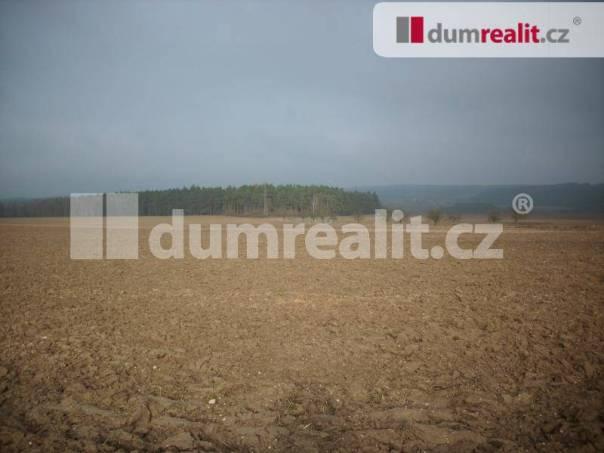 Prodej pozemku, Nevřeň, foto 1 Reality, Pozemky | spěcháto.cz - bazar, inzerce