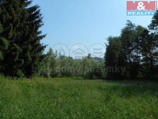 Prodej pozemku, Držkov, foto 1 Reality, Pozemky | spěcháto.cz - bazar, inzerce
