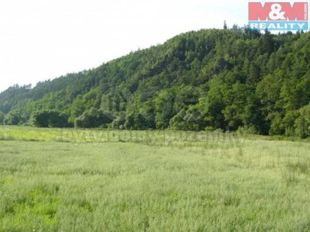Prodej pozemku, Kácov, foto 1 Reality, Pozemky | spěcháto.cz - bazar, inzerce