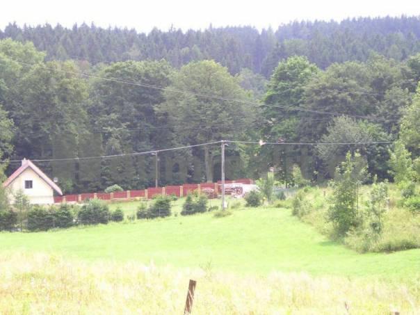 Prodej pozemku, Radešín, foto 1 Reality, Pozemky | spěcháto.cz - bazar, inzerce