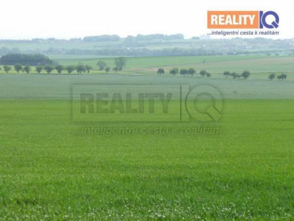 Prodej pozemku, Morašice, foto 1 Reality, Pozemky | spěcháto.cz - bazar, inzerce