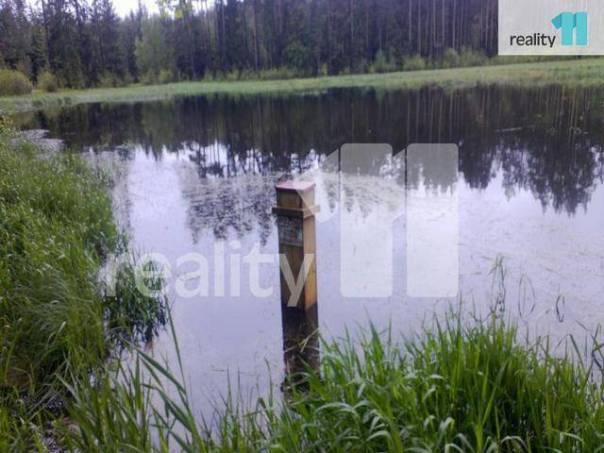 Prodej pozemku, Trstěnice, foto 1 Reality, Pozemky | spěcháto.cz - bazar, inzerce
