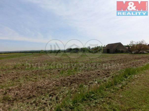 Prodej pozemku, Chotusice, foto 1 Reality, Pozemky | spěcháto.cz - bazar, inzerce