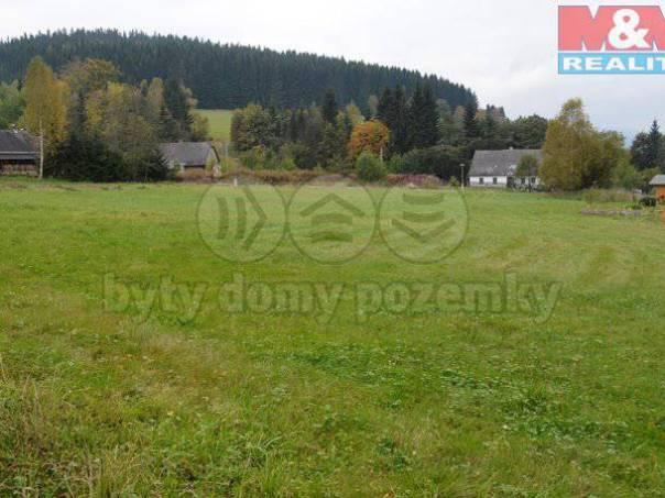 Prodej pozemku, Červená Voda, foto 1 Reality, Pozemky | spěcháto.cz - bazar, inzerce