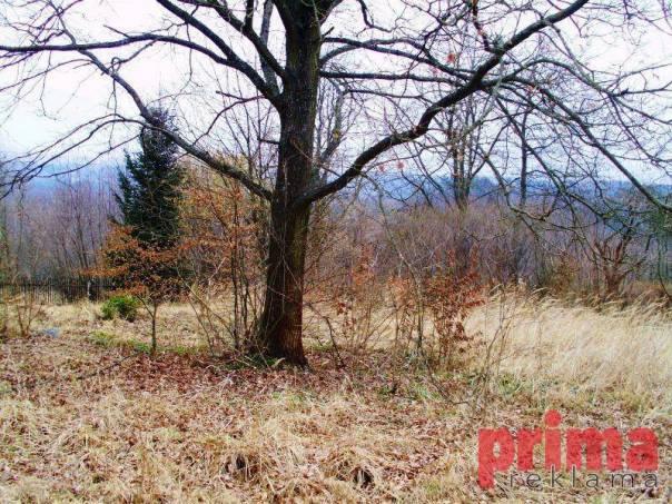 Prodej pozemku, Kamenice - Těptín, foto 1 Reality, Pozemky | spěcháto.cz - bazar, inzerce