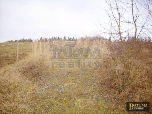 Prodej pozemku, Řehenice, foto 1 Reality, Pozemky | spěcháto.cz - bazar, inzerce