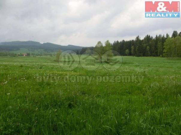 Prodej pozemku, Volary, foto 1 Reality, Pozemky | spěcháto.cz - bazar, inzerce