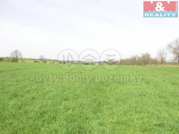 Prodej pozemku, Homole, foto 1 Reality, Pozemky | spěcháto.cz - bazar, inzerce