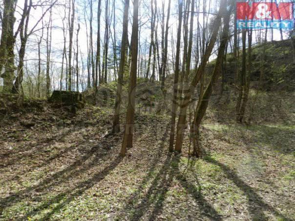 Prodej pozemku, Kozlovice, foto 1 Reality, Pozemky | spěcháto.cz - bazar, inzerce