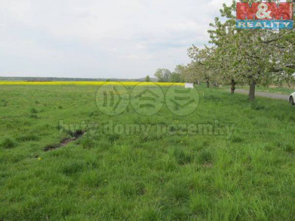 Prodej pozemku, Volárna, foto 1 Reality, Pozemky | spěcháto.cz - bazar, inzerce