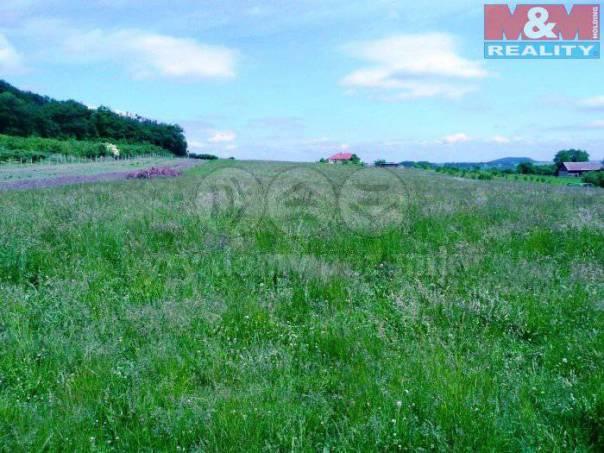 Prodej pozemku, Loučeň, foto 1 Reality, Pozemky | spěcháto.cz - bazar, inzerce