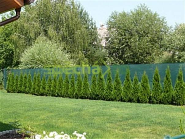 Thuja Tuja Tuje Thuje Smaragd-100 cm nej. cena !!, foto 1 Zahrada, zahradní příslušenství, Osivo a plodiny | spěcháto.cz - bazar, inzerce zdarma