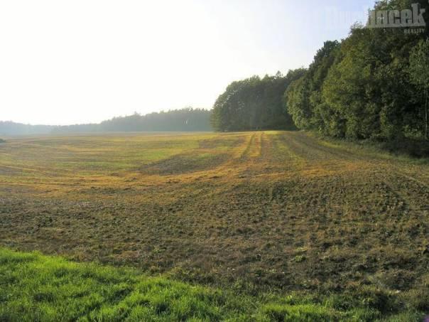 Prodej pozemku, Hostišová, foto 1 Reality, Pozemky | spěcháto.cz - bazar, inzerce