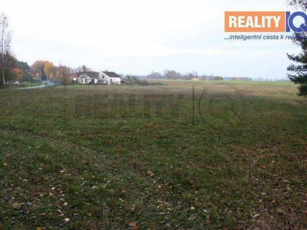 Prodej pozemku, Borovany - Vrcov, foto 1 Reality, Pozemky | spěcháto.cz - bazar, inzerce