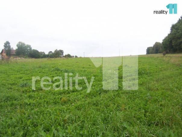 Prodej pozemku, Koberovice, foto 1 Reality, Pozemky | spěcháto.cz - bazar, inzerce