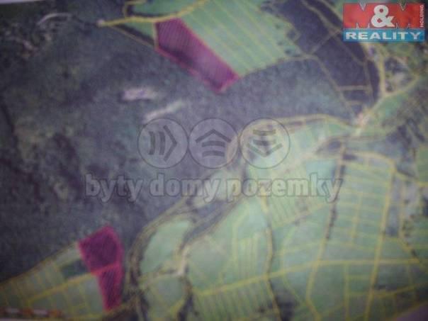 Prodej pozemku, Broumy, foto 1 Reality, Pozemky | spěcháto.cz - bazar, inzerce