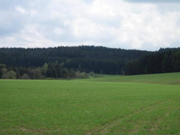 Prodej pozemku, Bojanov, foto 1 Reality, Pozemky | spěcháto.cz - bazar, inzerce