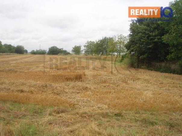 Prodej pozemku, Kokory, foto 1 Reality, Pozemky | spěcháto.cz - bazar, inzerce
