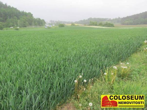 Prodej pozemku, Boskovice - Mladkov, foto 1 Reality, Pozemky | spěcháto.cz - bazar, inzerce