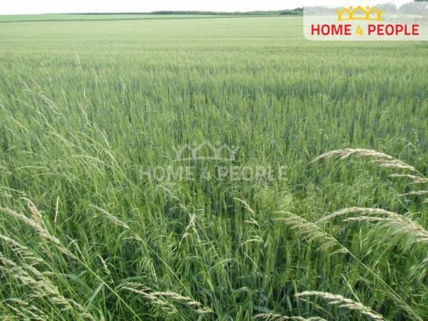 Prodej pozemku, Nehvizdy, foto 1 Reality, Pozemky | spěcháto.cz - bazar, inzerce