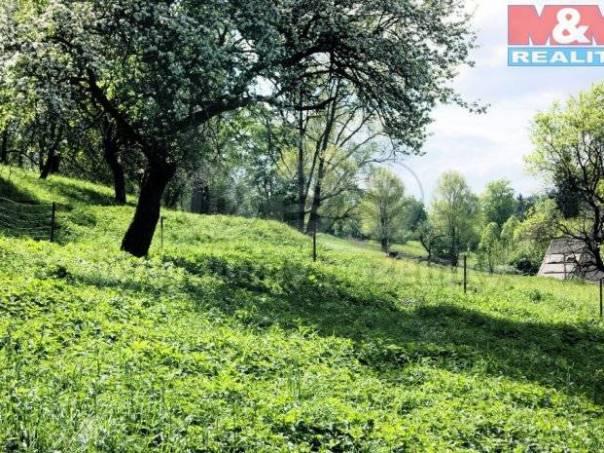 Prodej pozemku, Zlatá Olešnice, foto 1 Reality, Pozemky | spěcháto.cz - bazar, inzerce