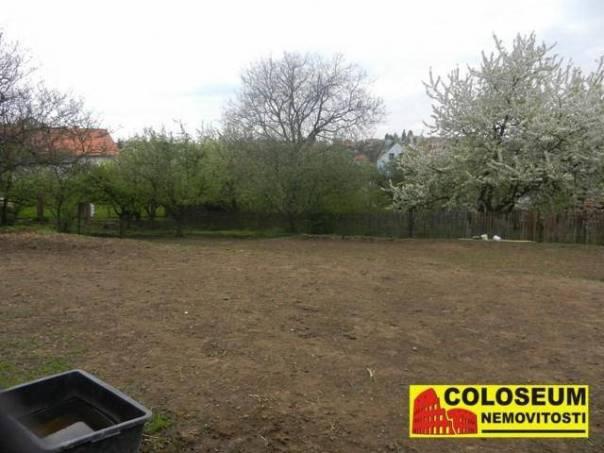 Prodej pozemku, Ruprechtov, foto 1 Reality, Pozemky | spěcháto.cz - bazar, inzerce