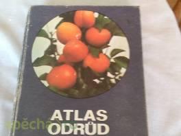 Atlas odrůd ovoce , Hobby, volný čas, Knihy  | spěcháto.cz - bazar, inzerce zdarma