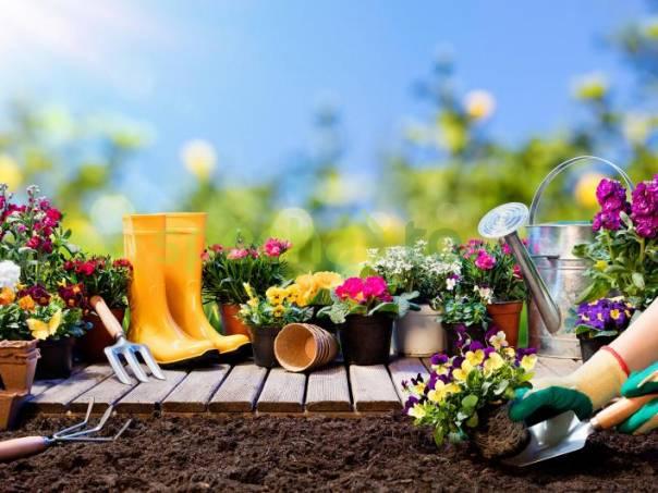 Pomocná zahradnice, foto 1 Nabídka práce, Úklid a údržba | spěcháto.cz - bazar, inzerce zdarma