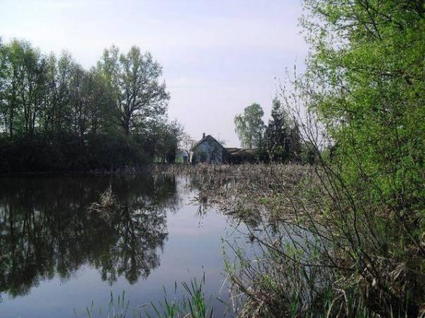 Prodej domu 3+1, Dynín, foto 1 Reality, Domy na prodej | spěcháto.cz - bazar, inzerce