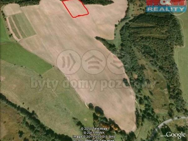 Prodej pozemku, Plesná, foto 1 Reality, Pozemky | spěcháto.cz - bazar, inzerce