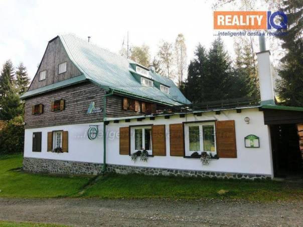 Prodej nebytového prostoru, Ostružná, foto 1 Reality, Nebytový prostor | spěcháto.cz - bazar, inzerce