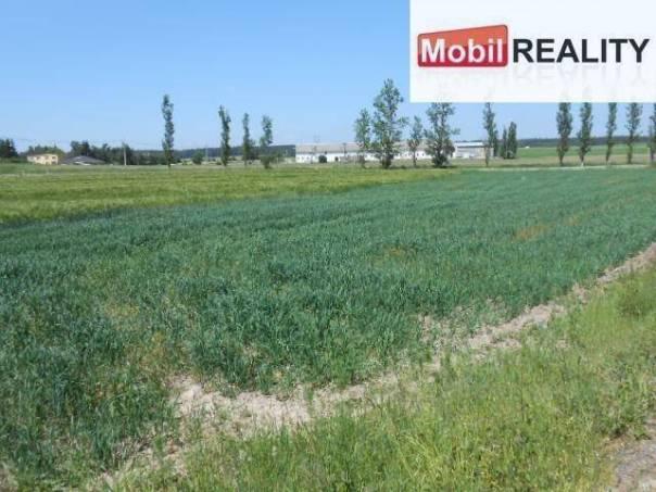 Prodej pozemku, Bor - Holostřevy, foto 1 Reality, Pozemky | spěcháto.cz - bazar, inzerce