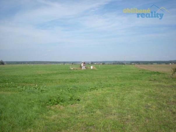 Prodej pozemku, Dolní Ředice, foto 1 Reality, Pozemky | spěcháto.cz - bazar, inzerce