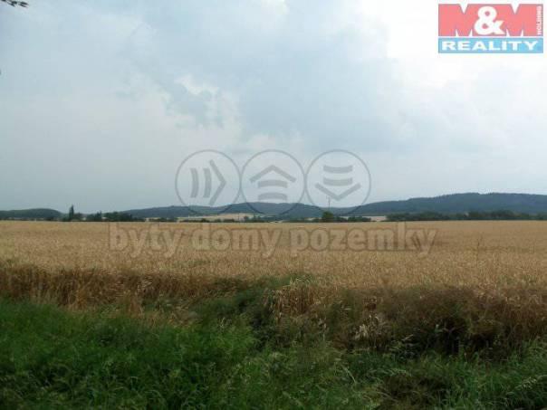 Prodej pozemku, Sedlec-Prčice, foto 1 Reality, Pozemky | spěcháto.cz - bazar, inzerce