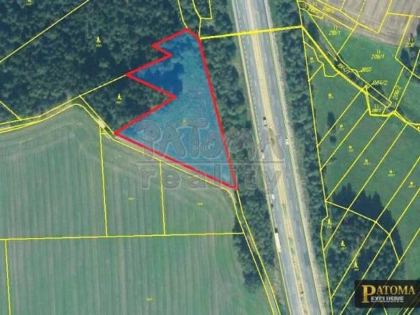 Prodej pozemku, Studený, foto 1 Reality, Pozemky | spěcháto.cz - bazar, inzerce