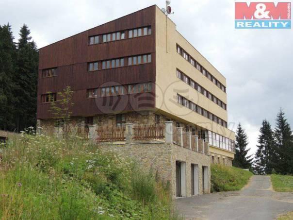 Prodej bytu 1+1, Staré Hamry, foto 1 Reality, Byty na prodej | spěcháto.cz - bazar, inzerce