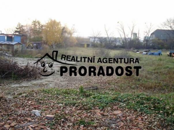 Pronájem pozemku, Podivín, foto 1 Reality, Pozemky | spěcháto.cz - bazar, inzerce