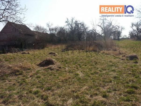 Prodej pozemku, Zásmuky, foto 1 Reality, Pozemky | spěcháto.cz - bazar, inzerce