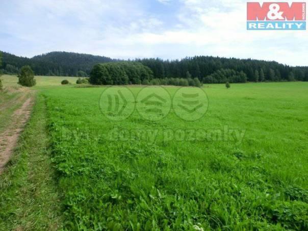Prodej pozemku, Meziměstí, foto 1 Reality, Pozemky | spěcháto.cz - bazar, inzerce