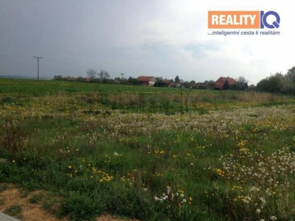 Prodej pozemku, Osice, foto 1 Reality, Pozemky | spěcháto.cz - bazar, inzerce
