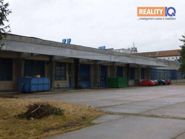 Prodej nebytového prostoru, Hradec Králové - Nový Hradec Králové, foto 1 Reality, Nebytový prostor | spěcháto.cz - bazar, inzerce