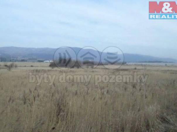 Prodej pozemku, Srbice, foto 1 Reality, Pozemky | spěcháto.cz - bazar, inzerce