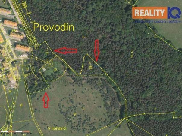 Prodej pozemku, Provodín, foto 1 Reality, Pozemky | spěcháto.cz - bazar, inzerce
