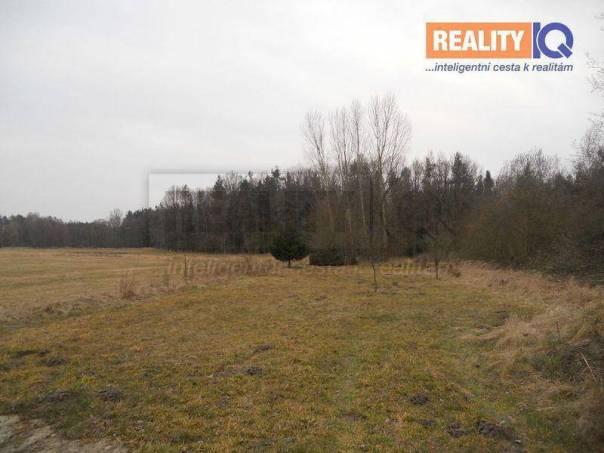 Prodej pozemku, Ponědrážka, foto 1 Reality, Pozemky | spěcháto.cz - bazar, inzerce
